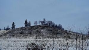 Inverno, nebbie e gelate